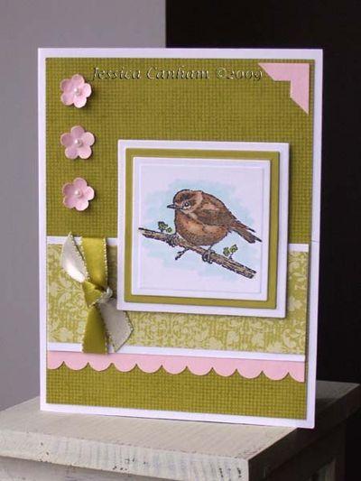 Spring Sparrow for blog