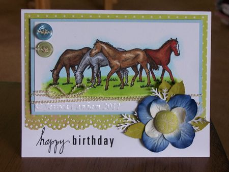 Birthday horses blog